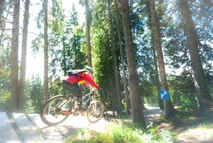 Mountain biking for all abilities in the Grand Massif