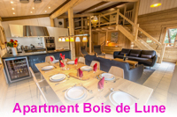 Beautiful apartment in Samoens village centre